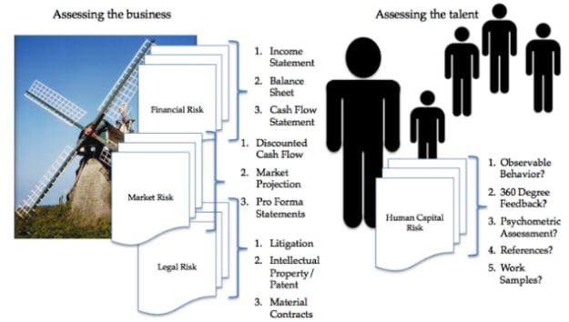 human capital, risk, Toby Elwin, blog