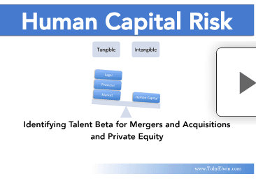 human capital, risk, cover, Toby Elwin, blog, beta, investment