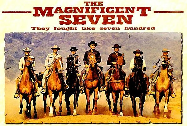 Magnificent Seven, team of me, blog, Toby Elwin